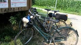 bici-navigli