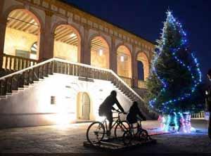 padova-albero-di-natale-bici