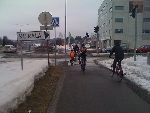 bici-finlandia