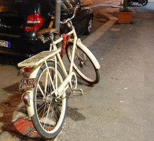 bici-microchip
