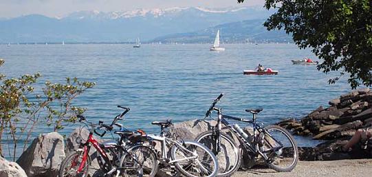 Pista ciclabile del lago di Costanza