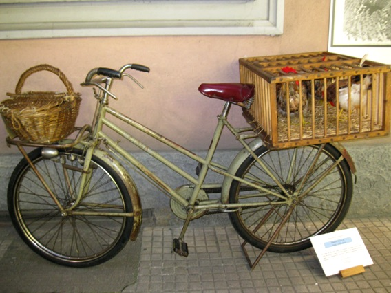 bici-trasporto