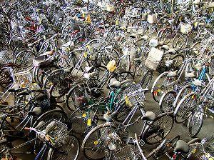 olanda-troppe-bici