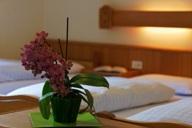 hotel-genziana-camera