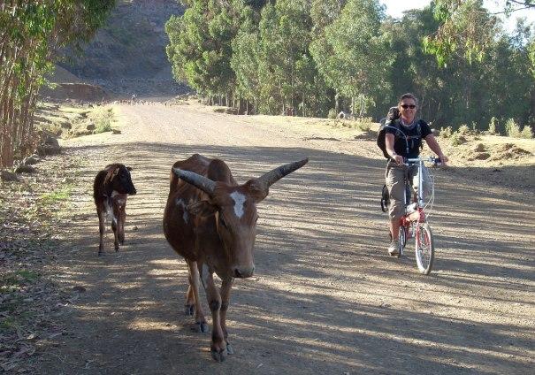 bici-pieghevole-viaggio-africa