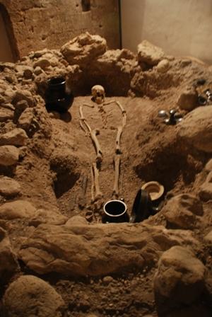 Scavo archeologico della tomba n°5, Museo Civico