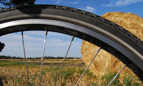 top-articoli-bici