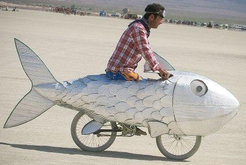 bici-pesce