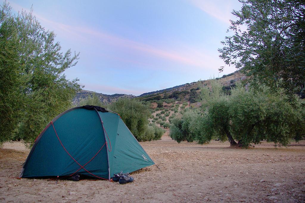 campeggio-selvaggio