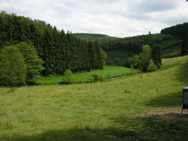 Campagna lussemburghese