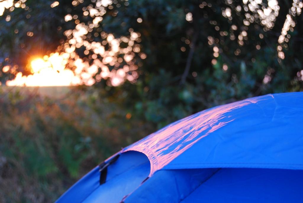 tenda