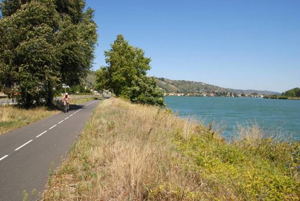 pista ciclabile fiume Rodano- rodano in bici