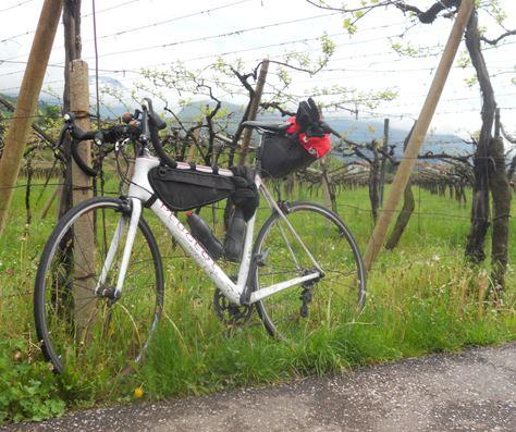 tozzi-bici