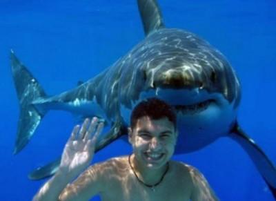 ciclisti-assicurazioni-squali