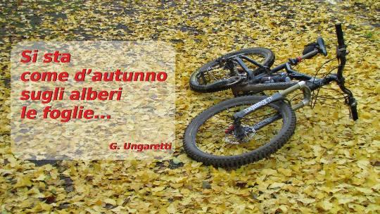 Ciclisti come foglie