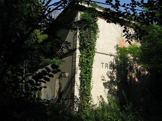 pista-ciclabile-treviso-ostiglia-stazione-trebaseleghe