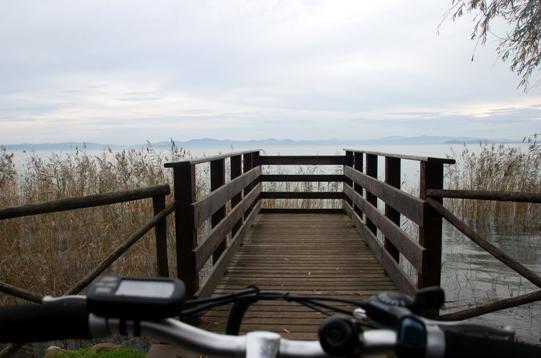 trasimeno-bici