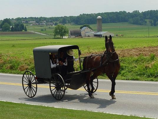 Amish della Pennsylvania