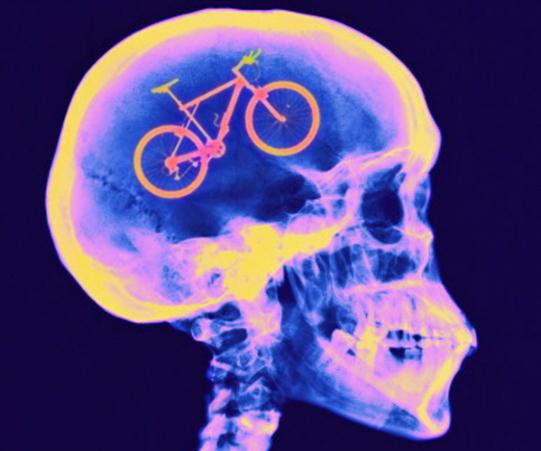 bicicletta cervello