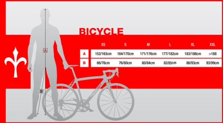 misure-telaio-bici-da-corsa