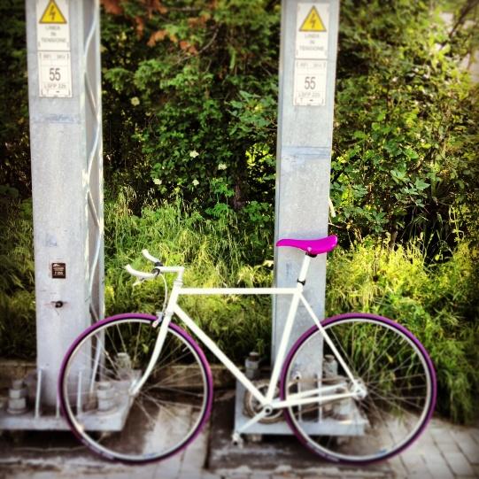 treno-bici-3