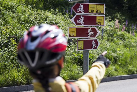 bici itinerari Arosa