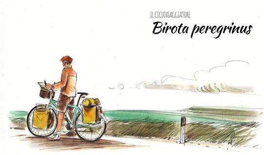 birota peregrinus