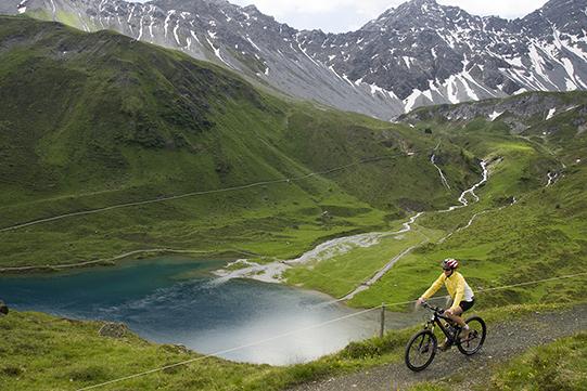 pinar lago alto arosa 541