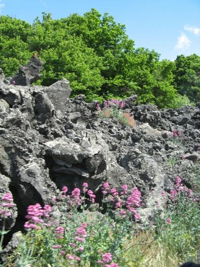 La lava e la natura