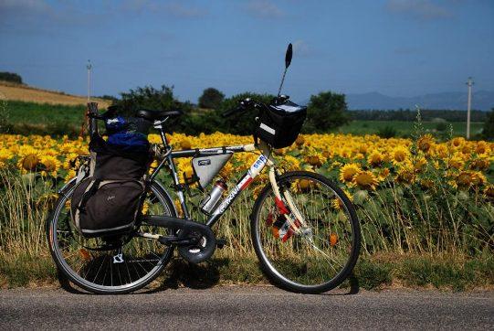 bici-economica