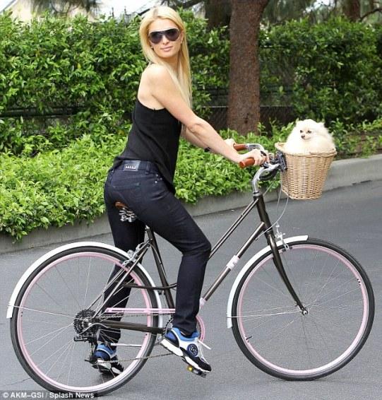 bici-poverta