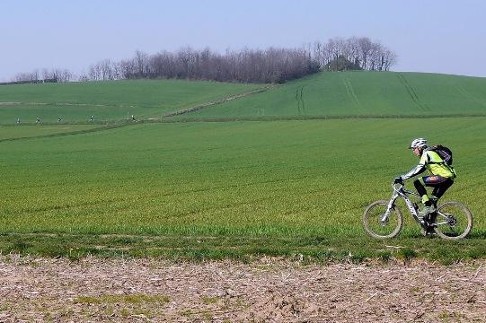 posizione in bici