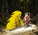 ca-virginia-roadbike-76-392x294-c