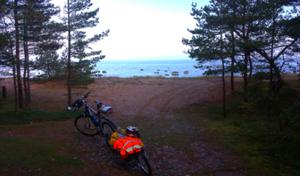 estonia-bici-5