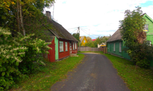 estonia-bici-7