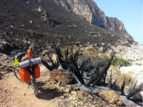 La riserva naturale del Monte Cofano dopo l'incendio del 13 Agosto