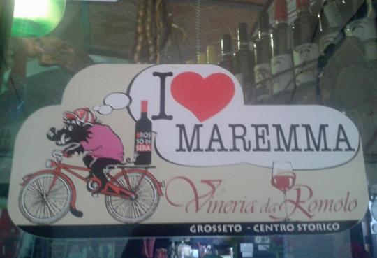 magnate-bici