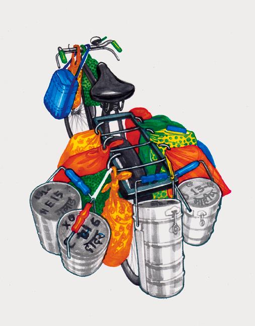 ghoda-bici-india-4