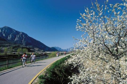 valle dell'adige in bici