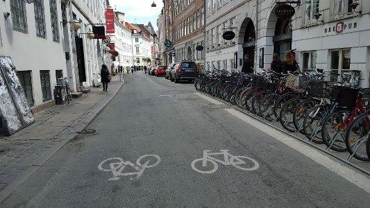 strada-ciclabile-copenhagen-3