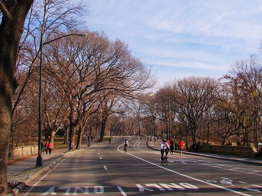 Biking in Central Park New York