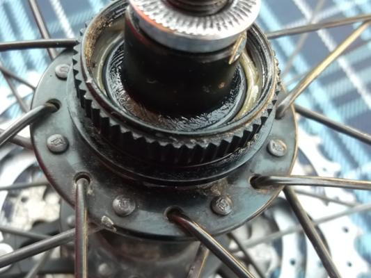 Rotori_48