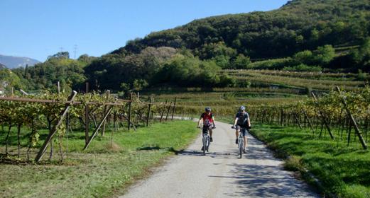 Ciclisti lungo la ciclabile della Vallagarina direzione lago di Loppio