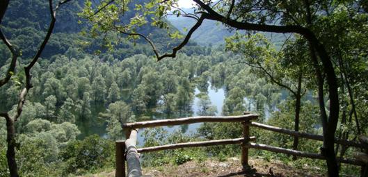 Biotopo del lago di Loppio
