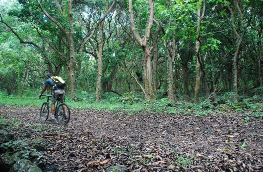 mauritius-cicloturismo-3