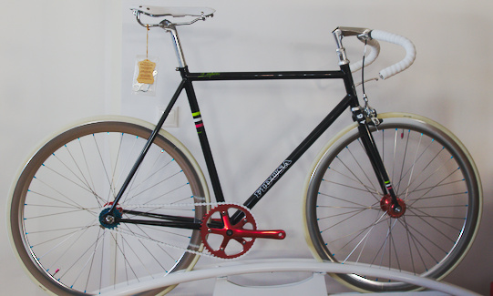 fidusa bici
