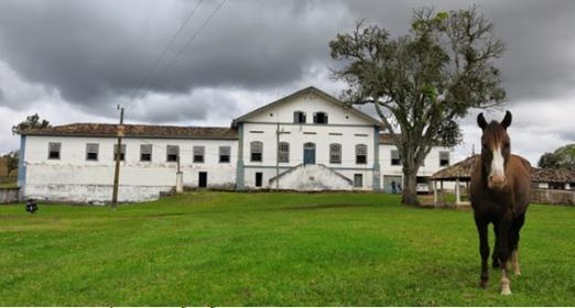 15-APR-2014: a metà strada tra São João del Rei e Carrancas, praticamente un miraggio, la mitica Fazenda Traituba