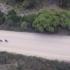 tasmania-bike