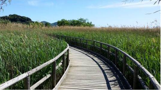 """Un tratto dell'itinerario """"Puccini"""" che ci porta fuori dal lago"""
