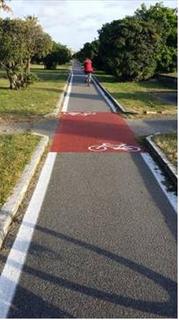 Tratto della ciclopista in corrispondenza di Viareggio